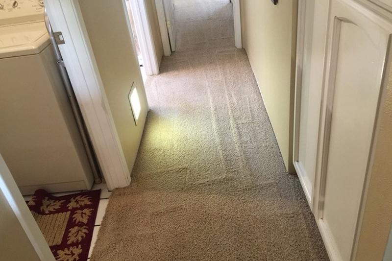 Boise Carpet Repair Cleaning Carpet Repair And Cleaning